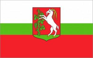 Flaga Urzędowa Miasta Lublin